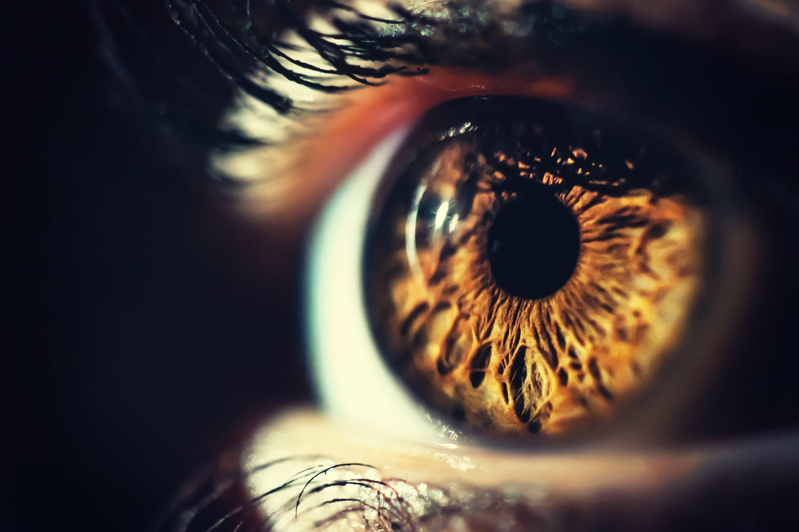 Veure bé no és sinònim de salut visual